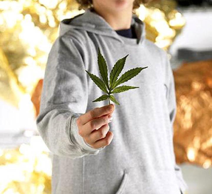 Легкие курящего марихуану куплю семена конопля пищевая