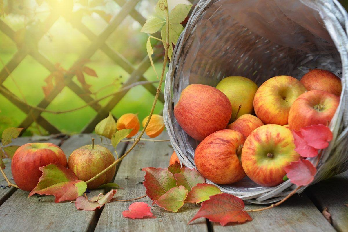 Десять вещей, которые обязательно нужно сделать этой осенью