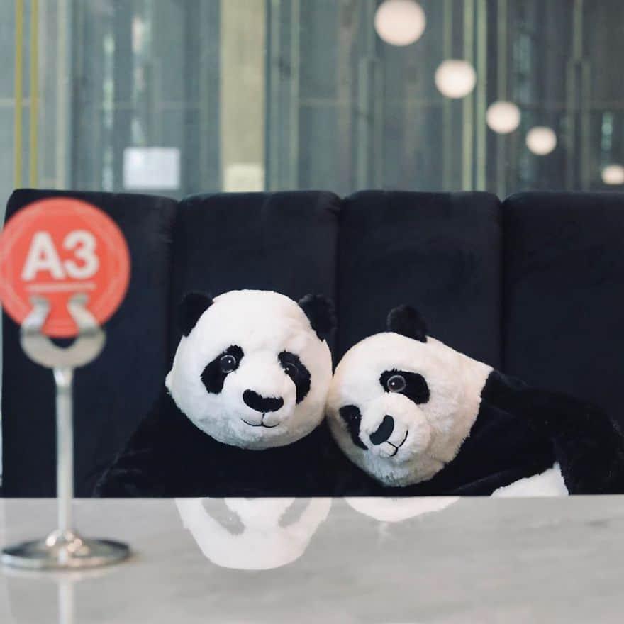 Ресторан в Тайланде рассадил за столами плюшевых панд,  чтобы посетители не скучали