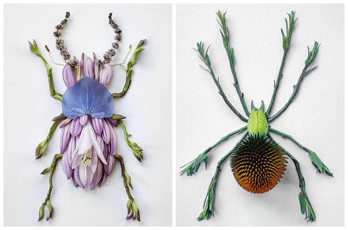 Стебель, шишка, лепесток – получился паучок: японский художник создает насекомых из растений