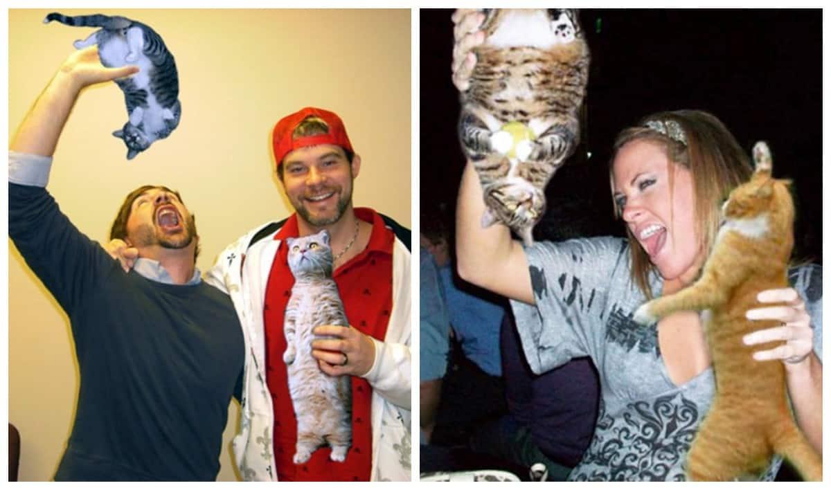 Как стать котоголиком? Замени алкоголь на кота!