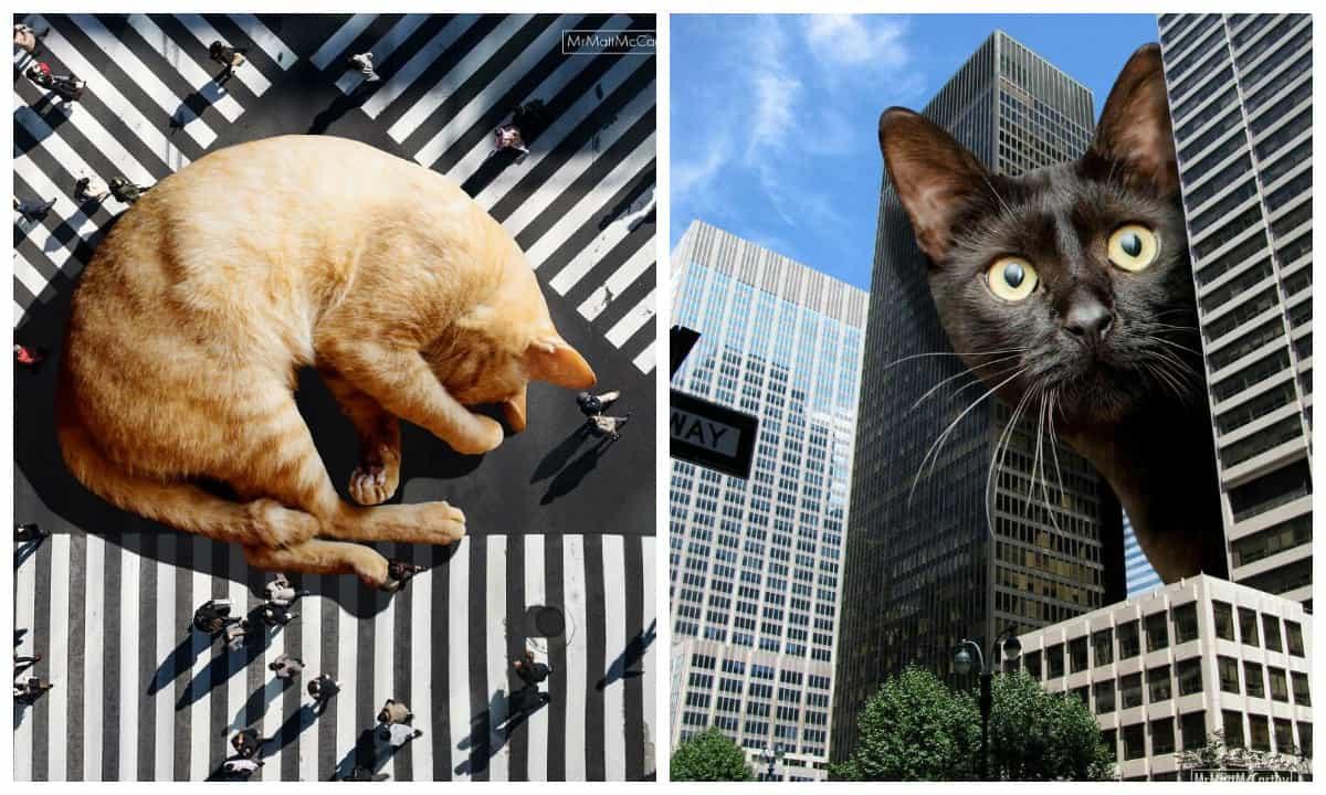 Фотохудожник создает сюрреалистические пейзажи с гигантскими кошками и нам уже страшно