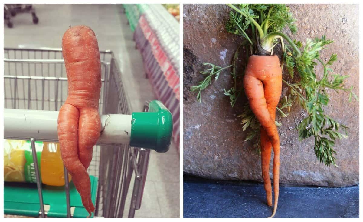Еще никогда морковь не выглядела такой привлекательной! Вот так надо пропогандировать здоровые продукты!