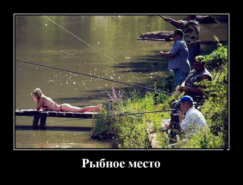 Демотиваторы на вторник и рыбные места