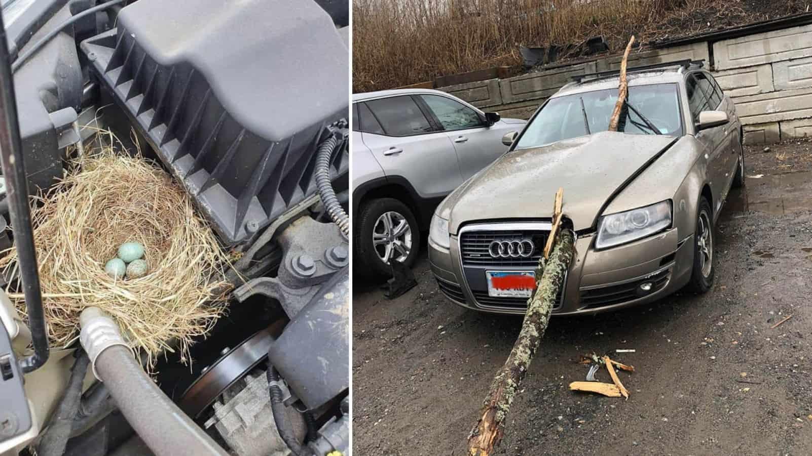 Когда даже самый опытный ремонтник машины не выдержал и пустил слезу