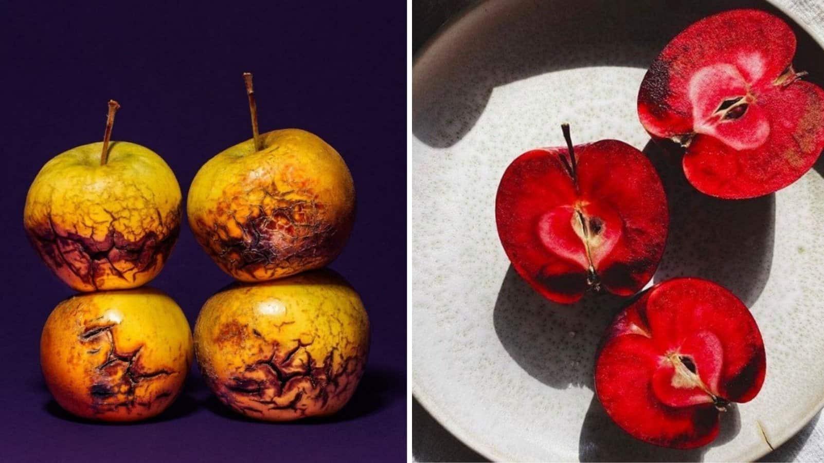 20 самых необычных сортов яблок, которые вы не пробовали