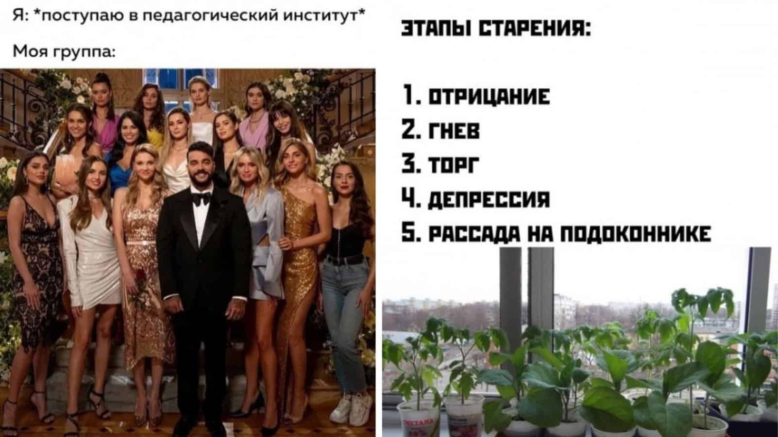 "Охапка мемов на утро понедельника и Тимати на шоу ""Холостяк"""