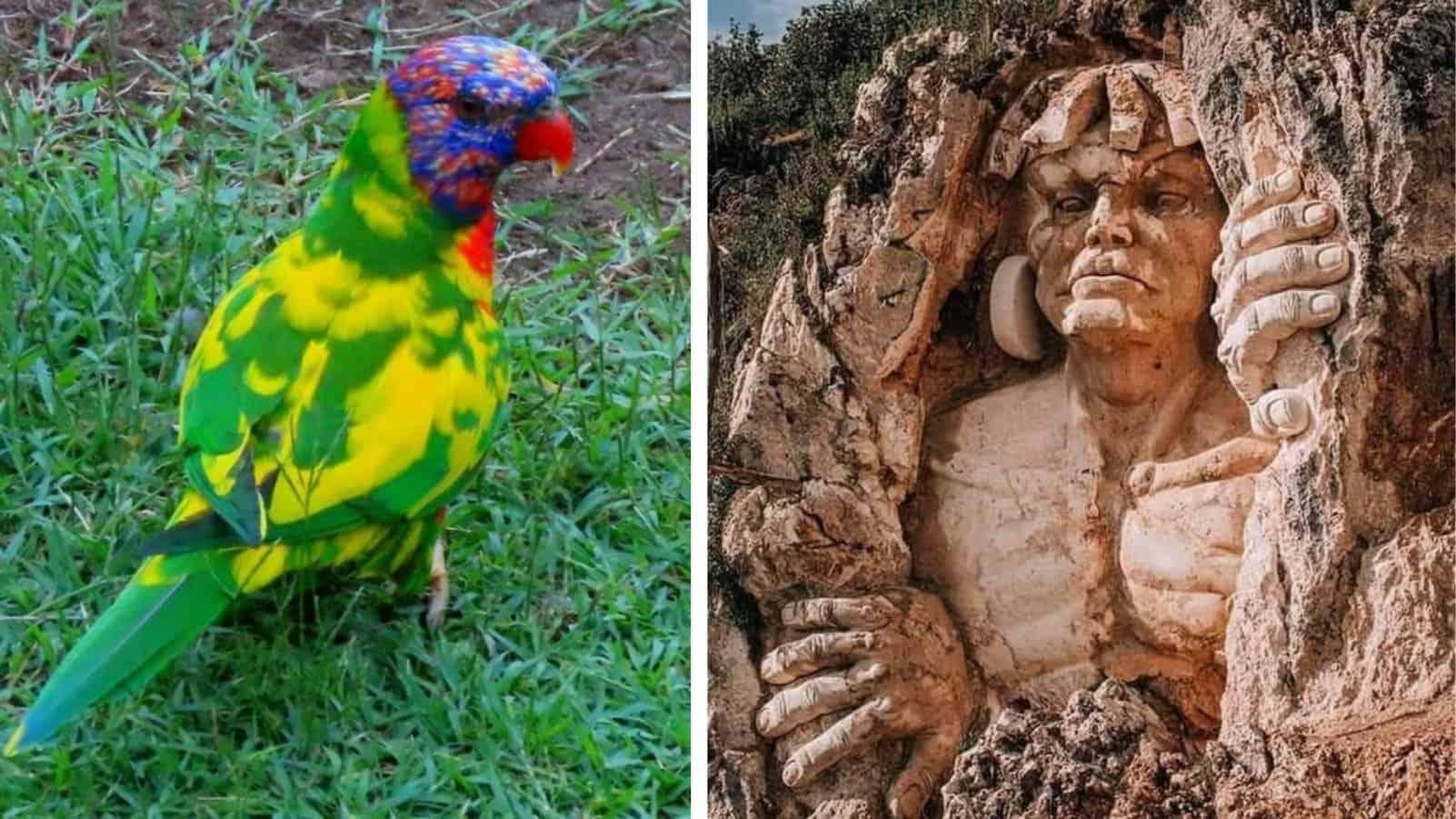 20 интересных вещиц и удивительных явлений, доказывающих, что мир - безграничен