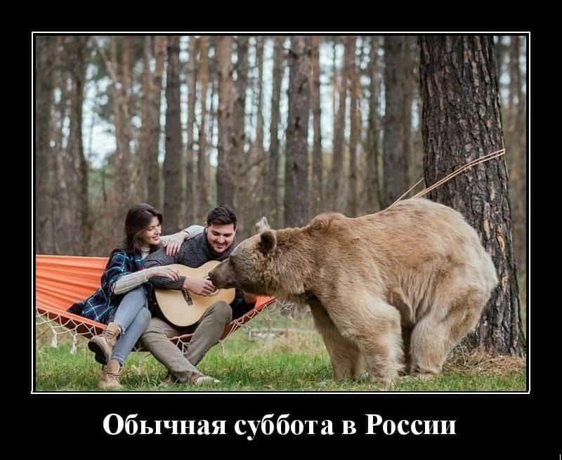 Позитивный винегрет из демотиваторов и обычная суббота в России