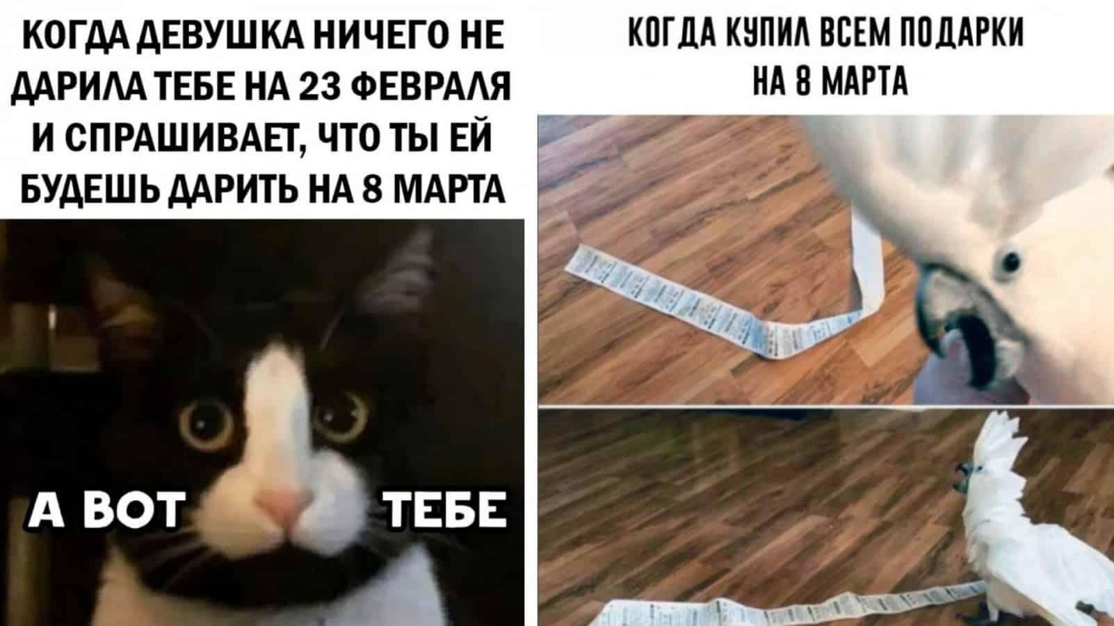 Новенькие фото приколы и мемы от остроцумцев из Сети