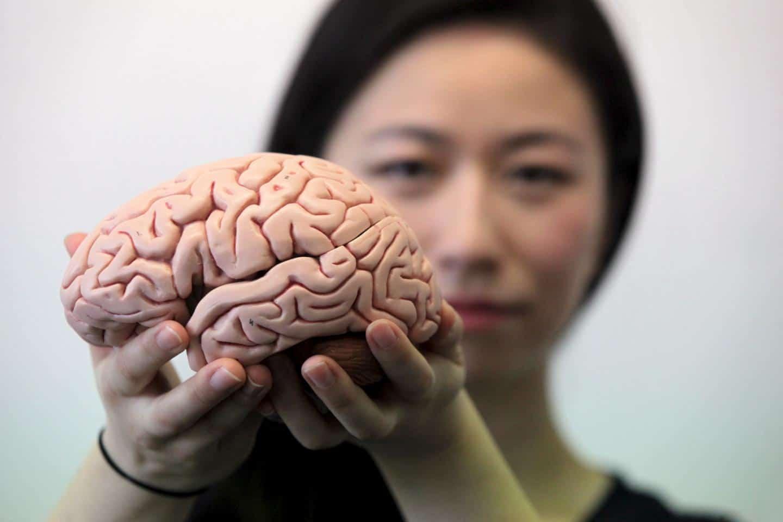 Про деменцию у женщин с хорошей физической формой и другие интересные факты о нашем мозге