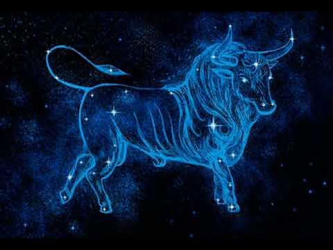 3 знака Зодиака, которым с Тельцом по пути