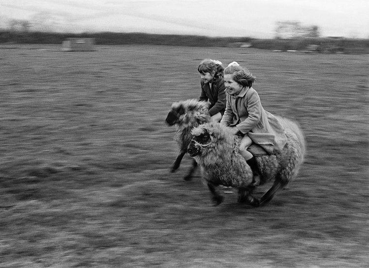 25 увлекательных исторических фото, на которых всё не так, как учат в школе