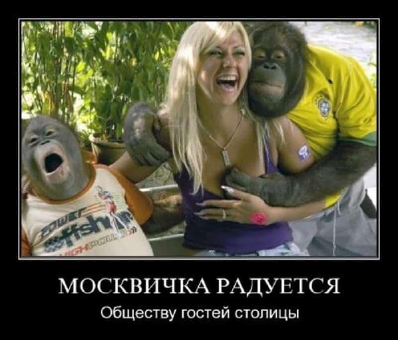 Вороны - москвички: 5 причин почему москвички не любят провинциалок
