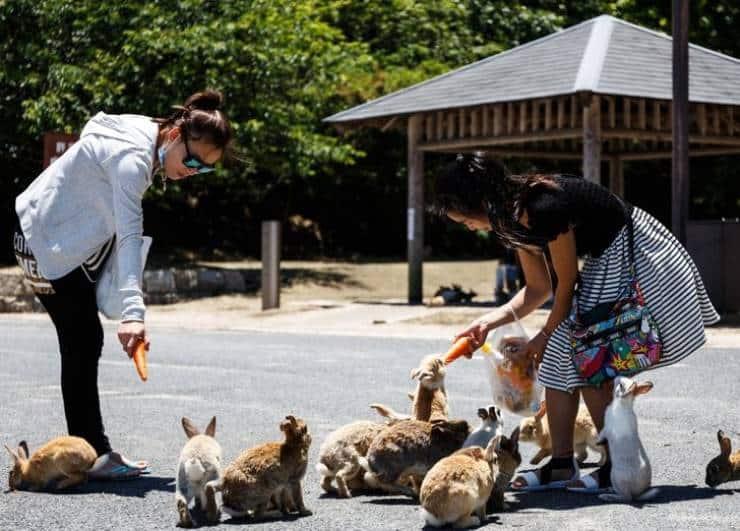 15 фото, доказывающих, что Япония - Страна Чудес...