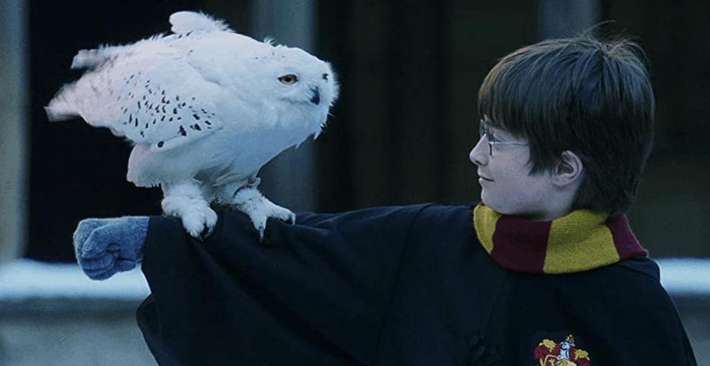 20 волшебных фактов о фильме Гарри Поттер и философский камень (2001)