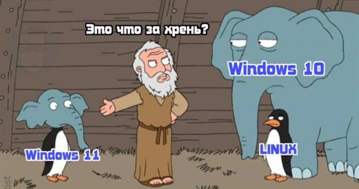 Microsoft, нормально же общались: реакция соцсетей на новый Windows 11