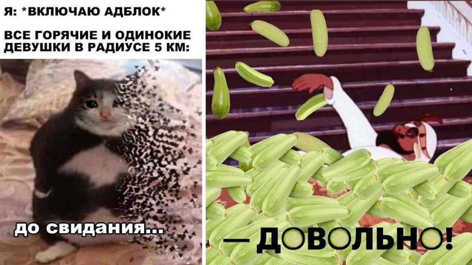 Мемы с утра пораньше и кабачки