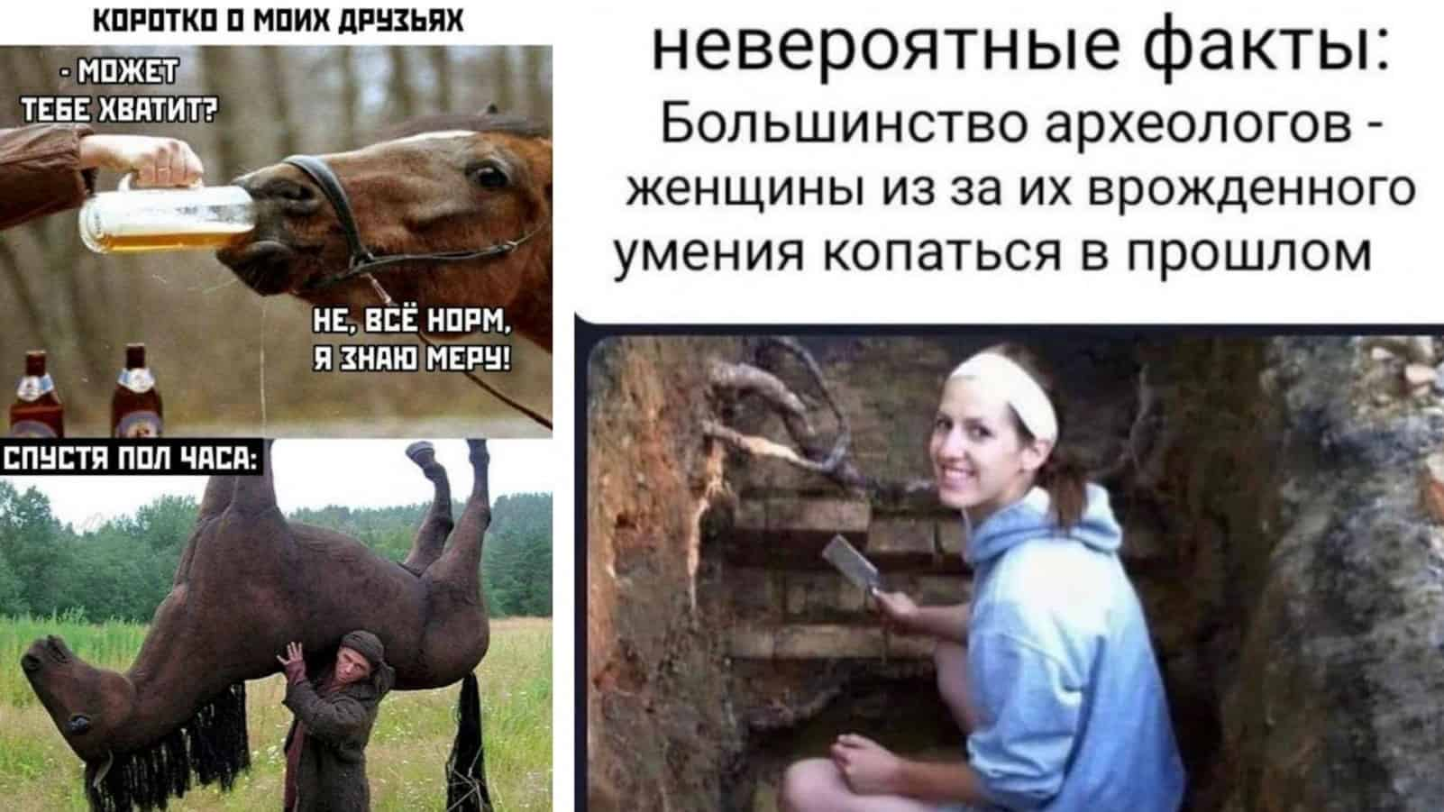 Копание в прошлом, напиться как лошадь и другие картинки с надписями