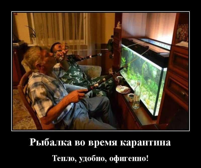 Демотиваторы для хорошего настроения рыбалка на карантине